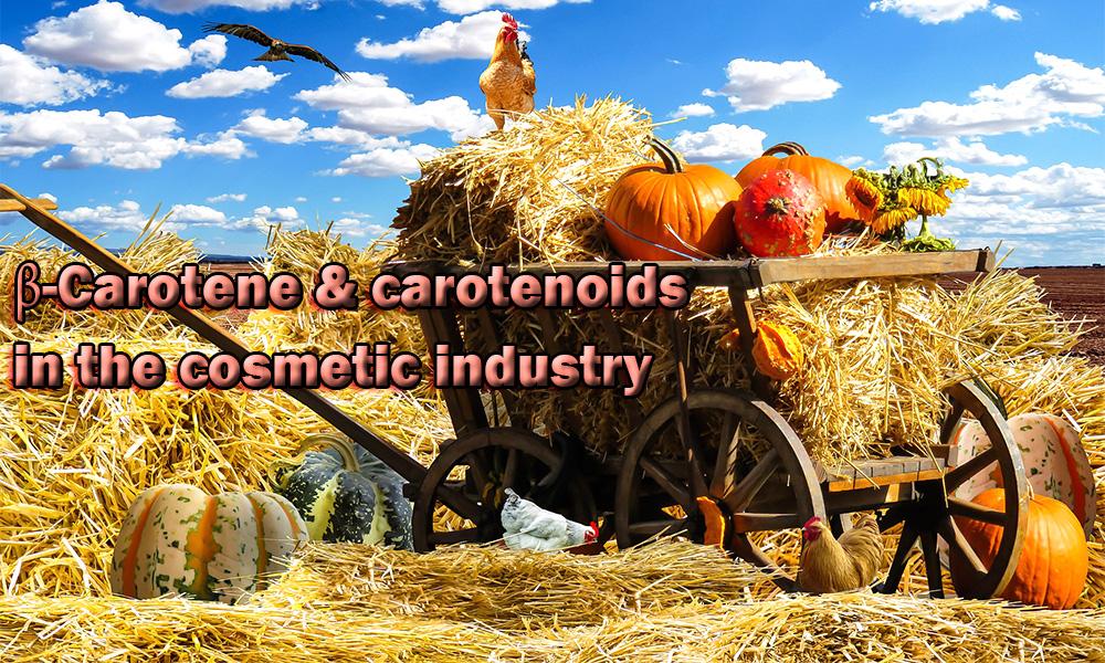 بتاکاروتن,کاروتنوئید ها, ویتامین A, رتینول, رادیکال های آزاد, استرس های اکسیداتیو, مجله تغذیه اروپا, تابش اشعه ماوراء بنفش, فرآورده های کازمتیک