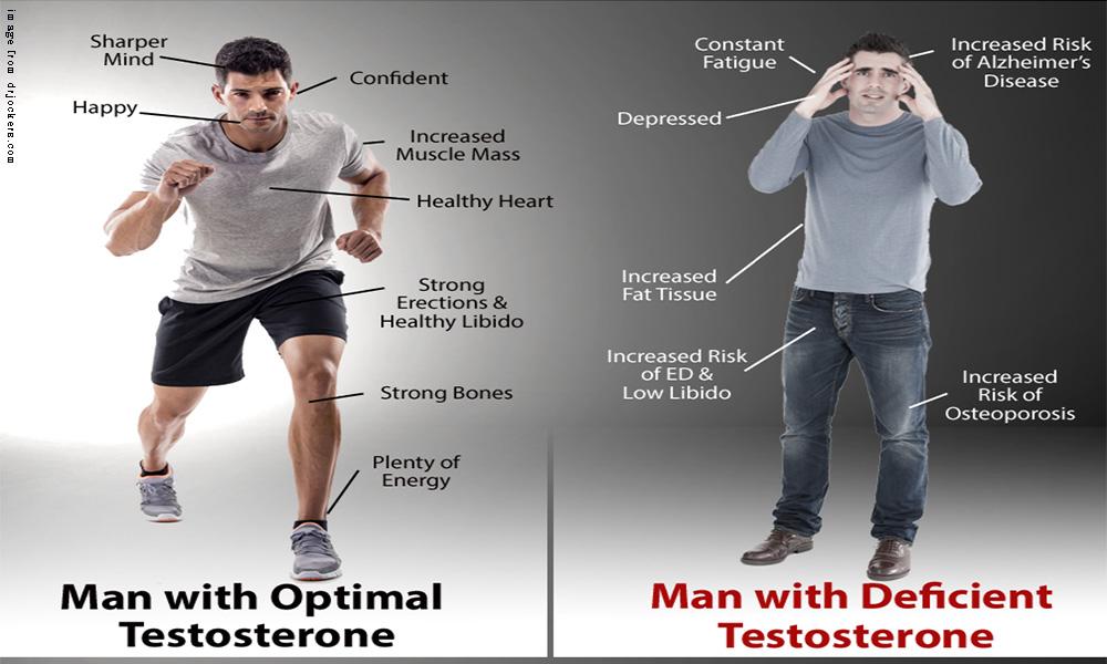 Photo of تستسترون هورمون زندگی ؛ عوامل کاهنده و راه های طبیعی افزایش سطح آن