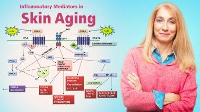 Photo of نگاهی گذرا بر تاثیر واسطه های التهابی بر پیر پوستی