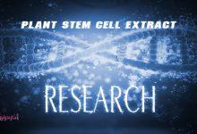 Photo of عصاره سلول های بنیادی گیاهی ، ضد پیر پوستی و آنتی اکسیدان