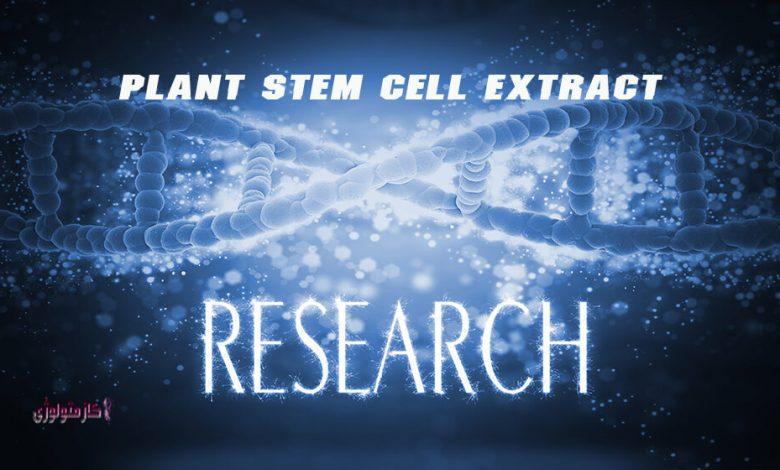 عصاره سلول های بنیادی, سلول های بنیادی گیاهی, ضد پیر پوستی, فعالیت آنتی اکسیدانی, چای سبز, جینسینگ,کینتین,سلول های اندوتلیومی پوست .